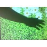 Интерактивный пол на стене и эффект цветы на траве