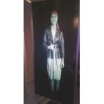Черная проекционная пленка для динамического виртуального помоутера в Музее Глинки