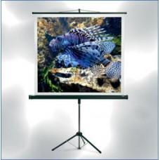 MW Проекционный экран на треноге STARFLEX PRO 200 x 200