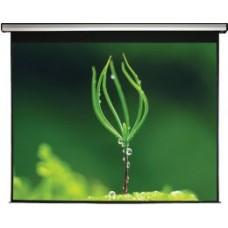 MW Большой Проекционный экран Electric Screen Silver 400 x 270, Формат 16:9, без пультов